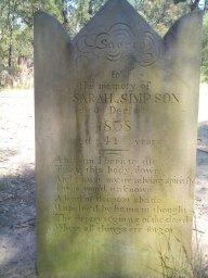 grave (Michael Wood 2011)