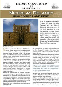 'Irish Lives Remembered' article about Nicholas Delaney