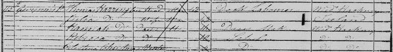 Julia Harrington in the 1851 census
